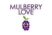Pixellent logo development for Mulberry Love