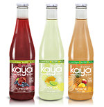 Pixellent Packaging concept design for Kaya beverages