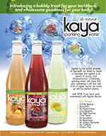 Pixellent sales material for kaya beverages sell sheet