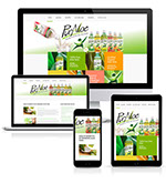 Pixellent website design for PurAloe beverages
